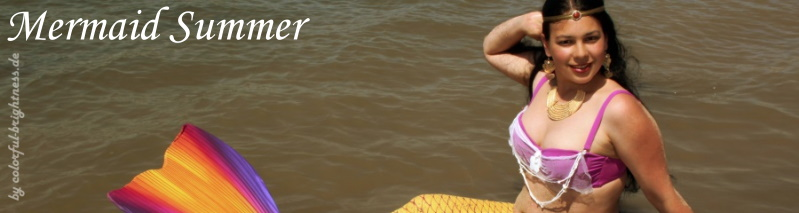 banner_mermaid_summer